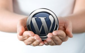 Uputstvo za WordPress