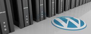 Sve što trebate znati o domenu, hostingu i web sajtu